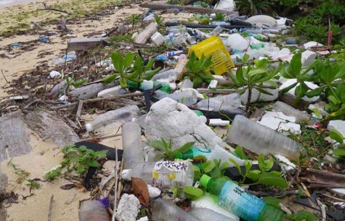 浜辺に残る海洋プラスチックゴミ