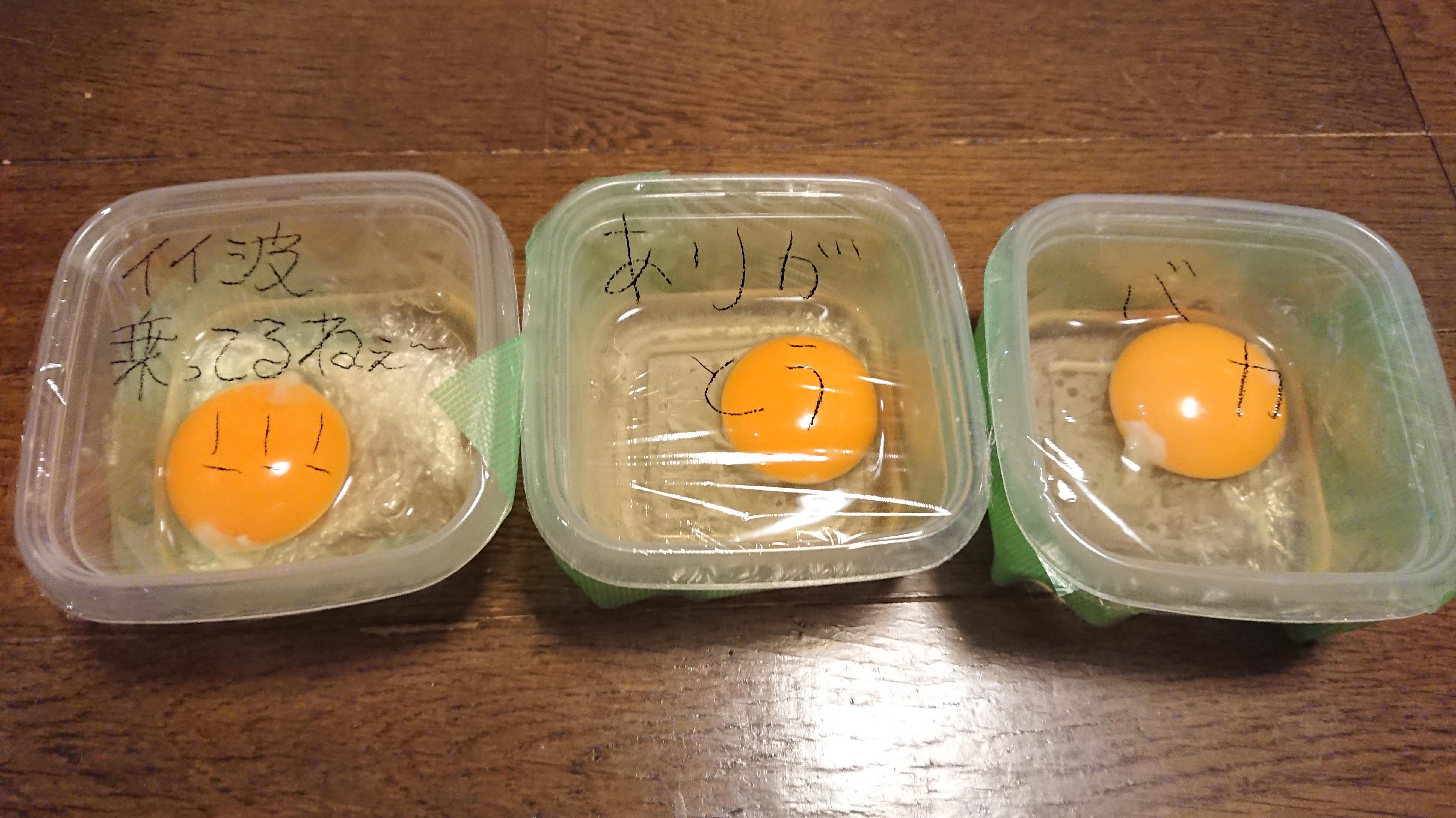 卵に「ありがとう」と言い続けると、言わない卵と違いは出るのか?